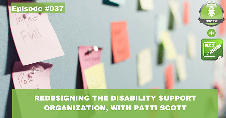 redesigning the disability service organization